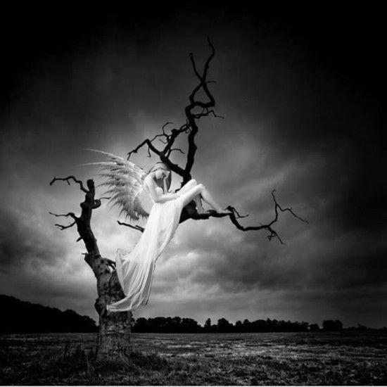 Anges - Image triste noir et blanc ...