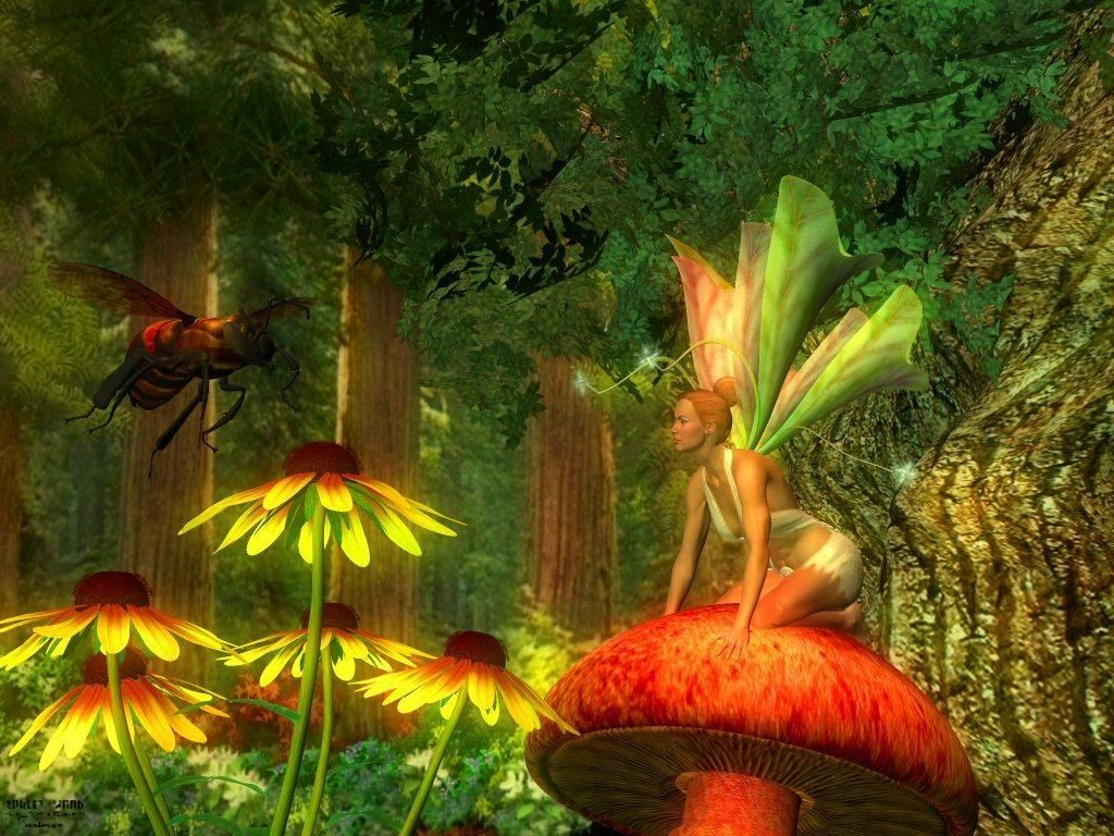 The gallery for fairies and roses for Fond ecran fee